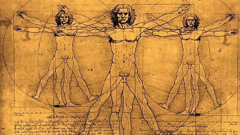 Малоизвестные факты о человеческом теле