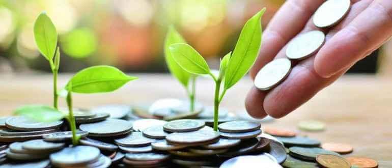 Инвестирование: что это такое, в чем выгода и как правильно инвестировать